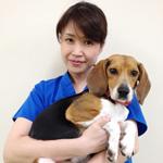 鍼灸治療専門医 春木英子先生のご紹介