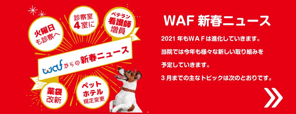 WAF新春ニュース